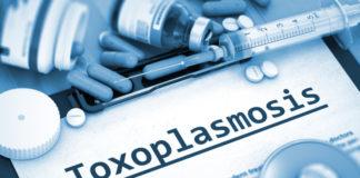 Schwangerschaft Toxoplasmose