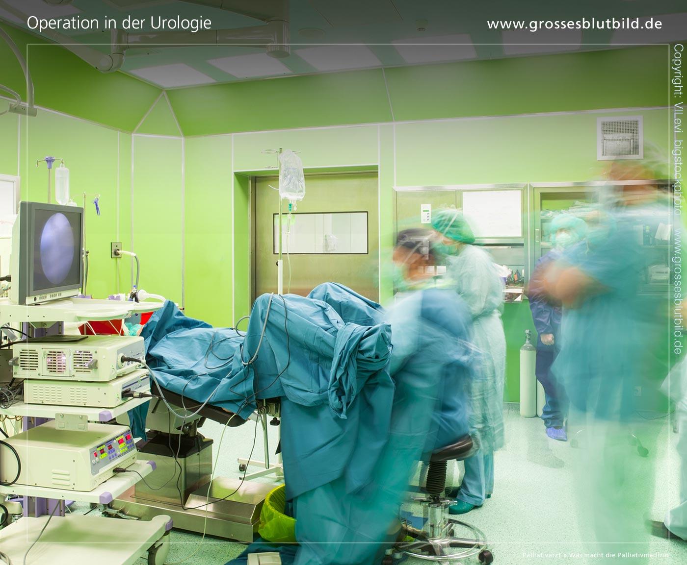 Andrologie und Urologie