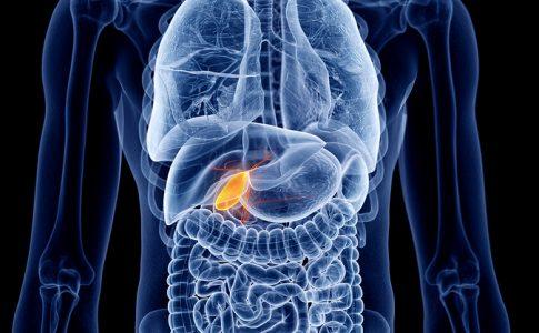 Gallenerkrankungen