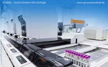 Blutbild automatisierte Hämatologie