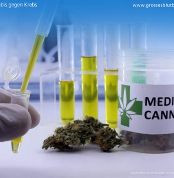 Hilft Cannabis gegen Krebs?