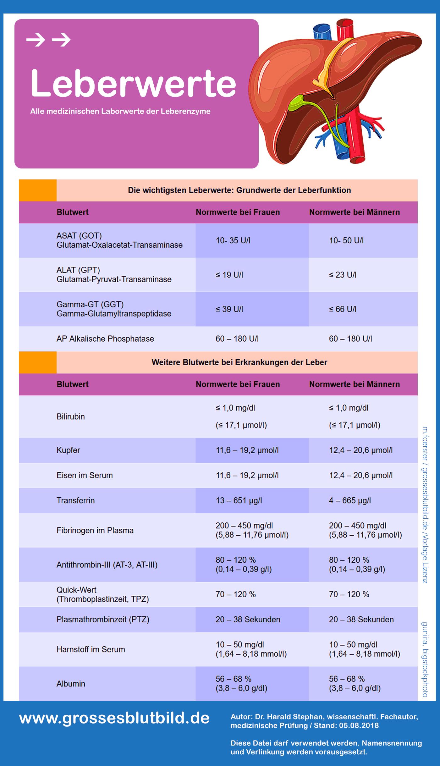 Leberwerte Tabelle
