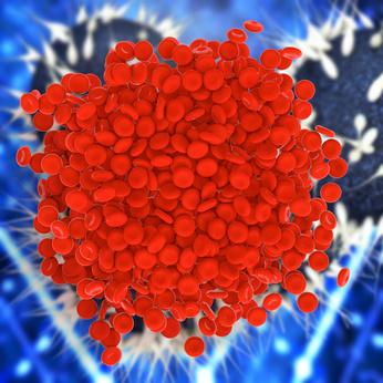 Helles Blut Im Stuhl Ursachen Hämatochezie