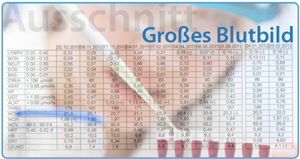 Singles Bayreuth 95444–95448 Singlebörse